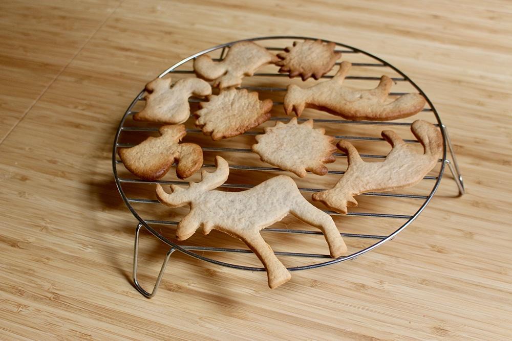 biscuit-vegan-noel-facile-rapide-epice