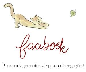 facebook laptitenoisette
